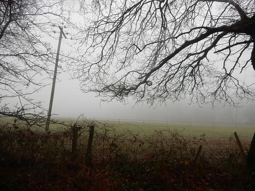 A mist descends