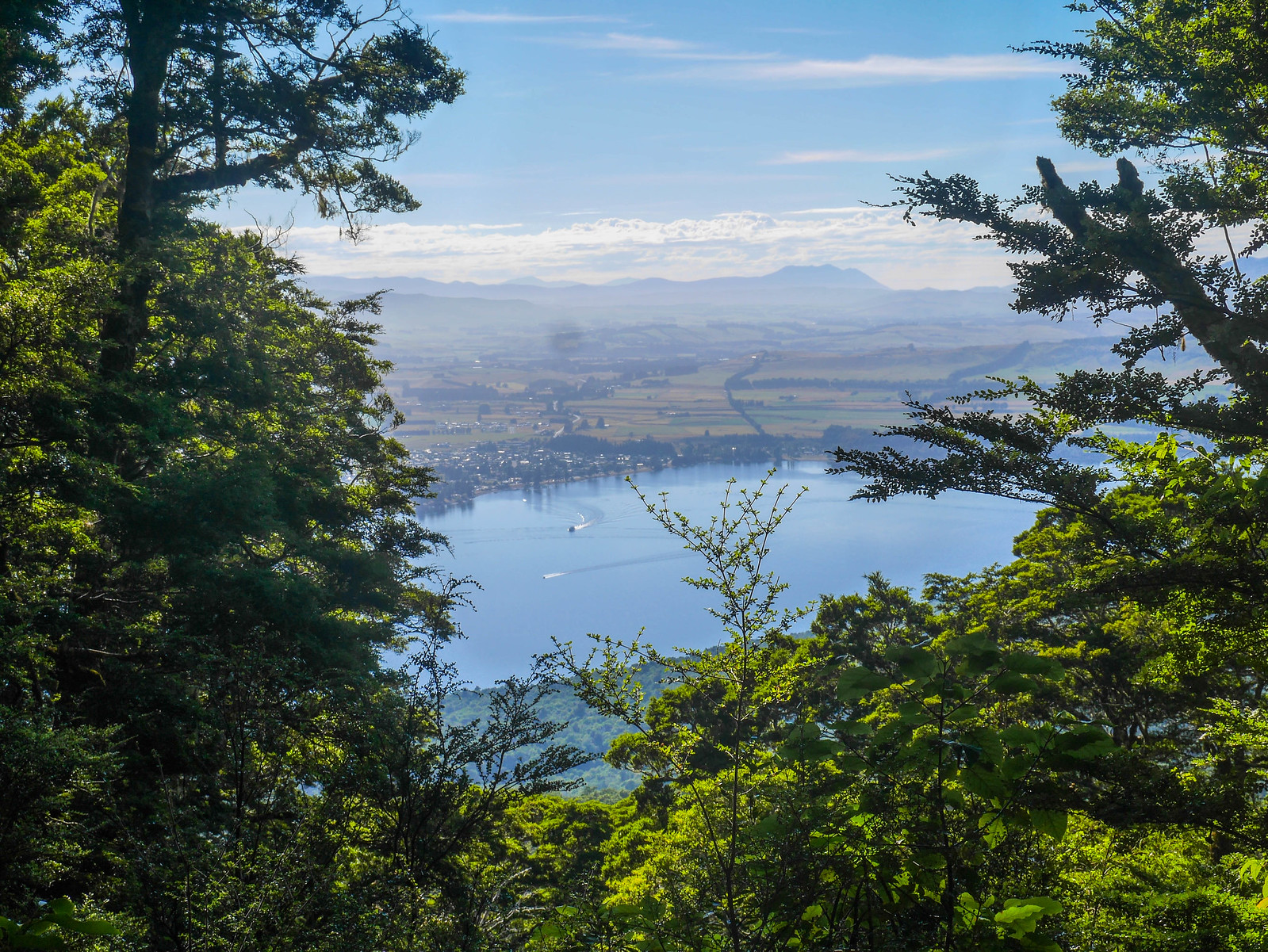 Trail climbs high above Lake Te Anau (and the town of Te Anau)