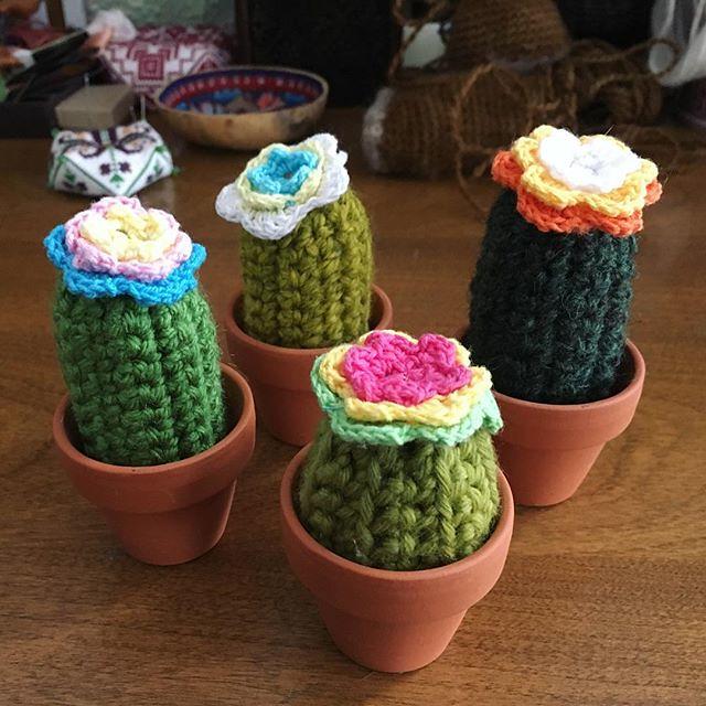 🌵🌵🌵🌵 #crochet #amigurumi