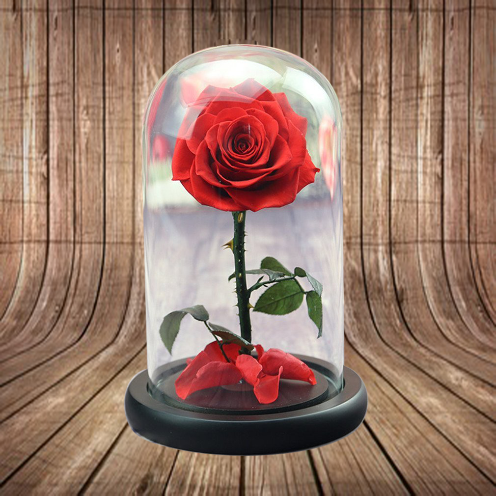 preserved-rose