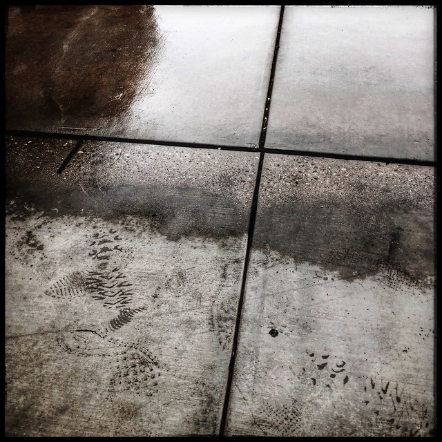 Footprints in the rain