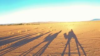 Sunrise Sahara Desert