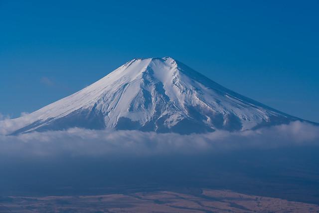 富士山をズーム@高座山