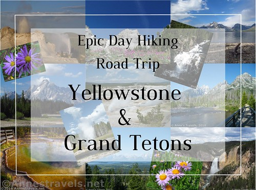 Epic Day Hiking Road Trip to Yellowstone and Grand Teton National Parks! Photos are: Top Row (L-R) Wildflowers in Teton Canyon; Castle Geyser and Old Faithful Geyser; Garnet Canyon; Hidden Falls; Lakeshore Trail. Middle Row: Lakeshore Trail; Porcelain Basin; String Lake Outlet on the Jenny Lake Trail. Bottom Row: Morning Glory Pool at sunset; Riverside Geyser; view from near Grand View Point; wildflowers along the Huckleberry Trail; Lower Yellowstone Falls from Lookout Point.