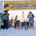 Sat, 02/03/2018 - 12:07 - Yukon Quest 2018 - Julien Schroder