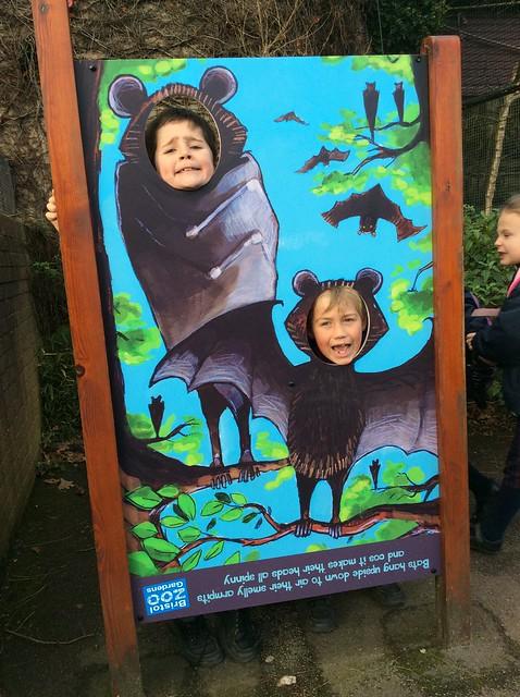 YR 3 Bristol Zoo Jan18