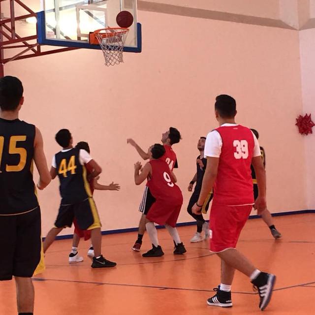 basket minozzi