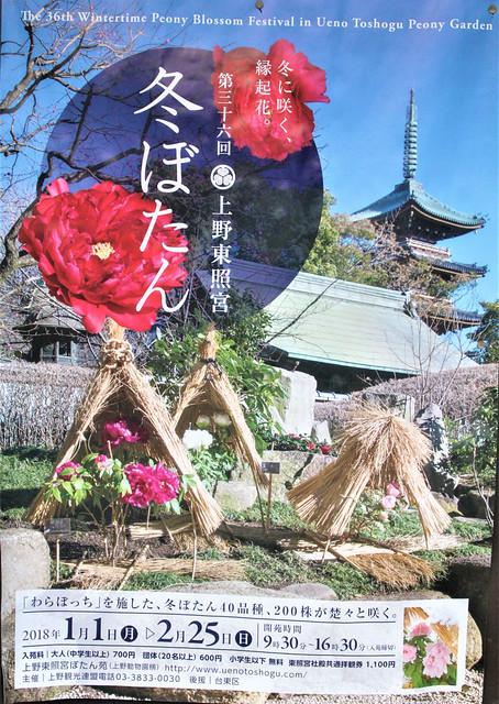 uenotosyogu-gosyuin02062
