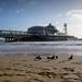 IMG_1110 - Bournemouth Pier - Dorset - 17.01.18