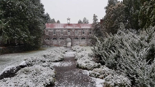 virginia statearboretumofvirginia blandyexperiementalfarm snow