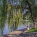 Beijing, Yuyuantan Park 11