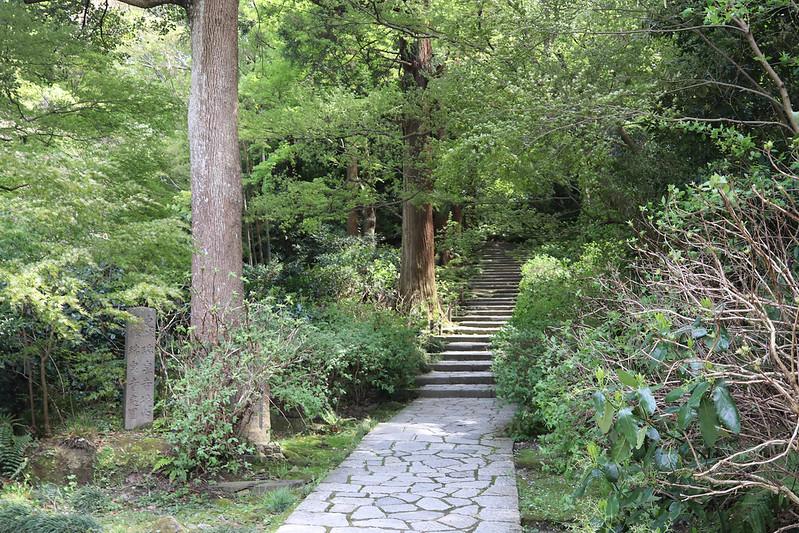 20170415_鎌倉アルプス_0382.jpg