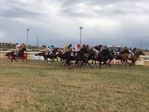 Carreras de caballos en el hipódromo temporada de invierno