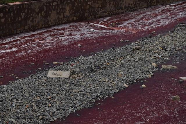 Contaminación en río Seco