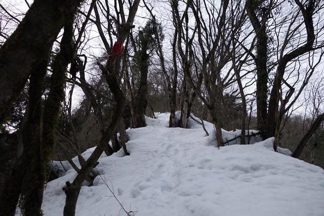 Attack to The Mt. HITOMOSHIYAMA