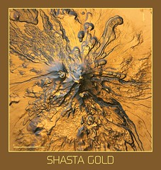Shasta Gold