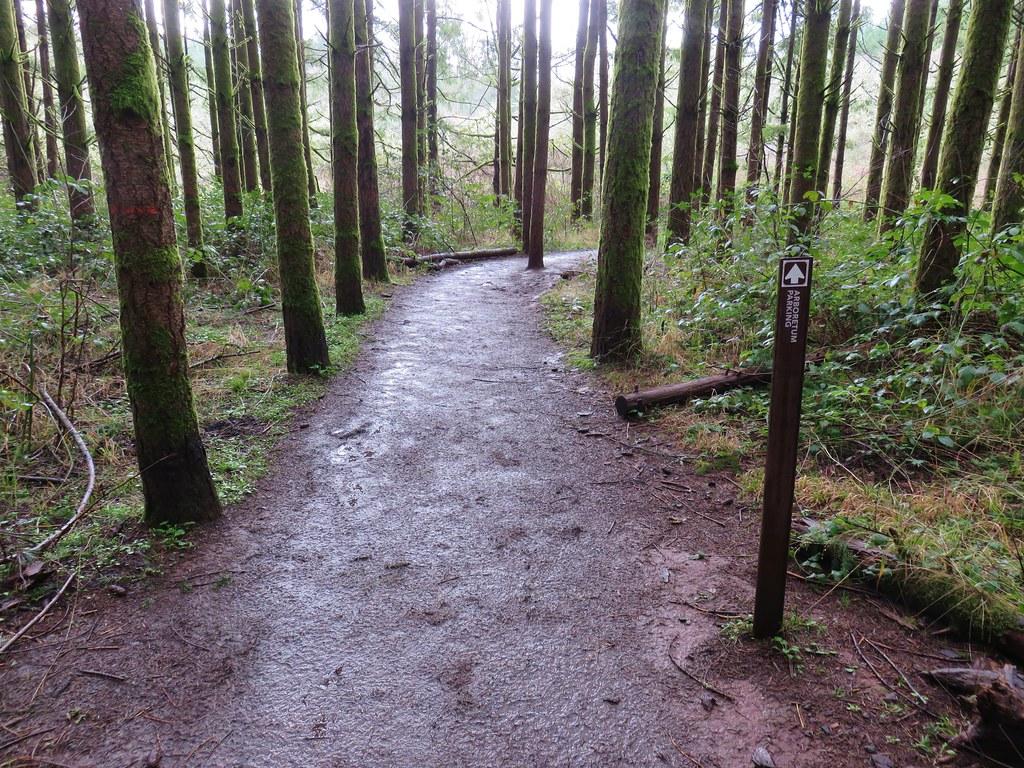Intesive Management Trail