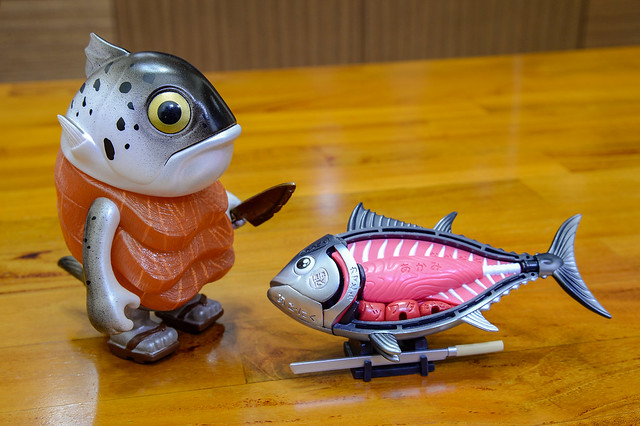 鮭魚前輩 + 解剖黑鮪魚