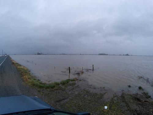 Skagit Farmland Flooding-3