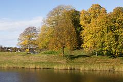 Golden_October 1.3, Fredrikstad, Norway