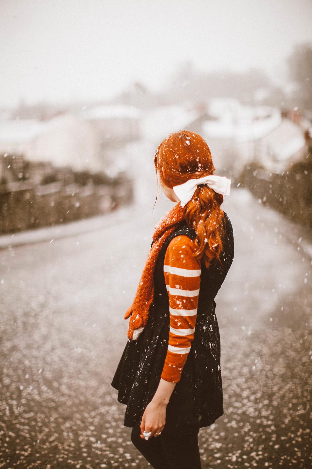 snowfox-29