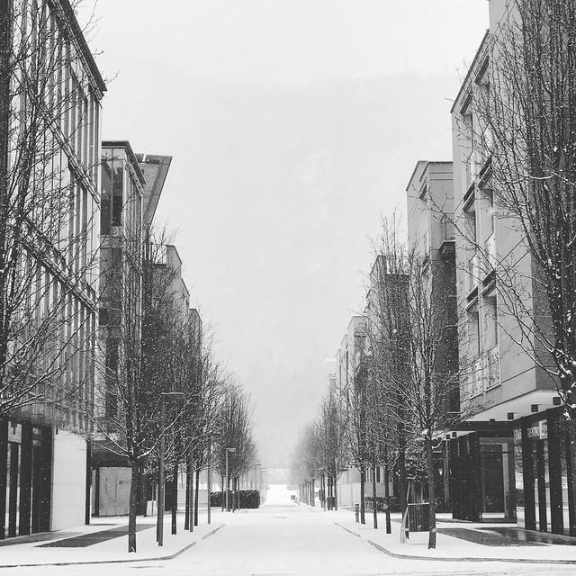 2018/365/060: A Snowy Symmetry