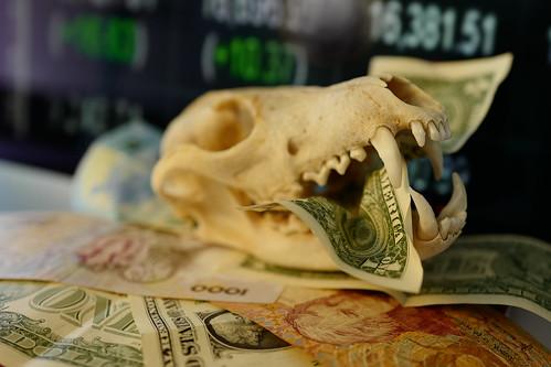Macro Mondays, Cash Money L1020594