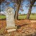 Thomas/Arabella Field Gravestone