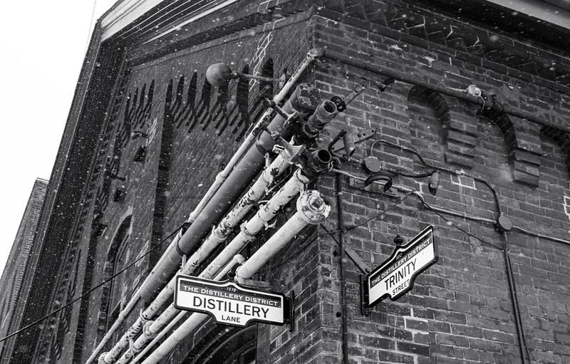 Distillery and Trinity_