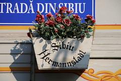 Rumänien 2016 - 16.Tag, Sibiu, Hermannstadt, Heltau, Michelsberg