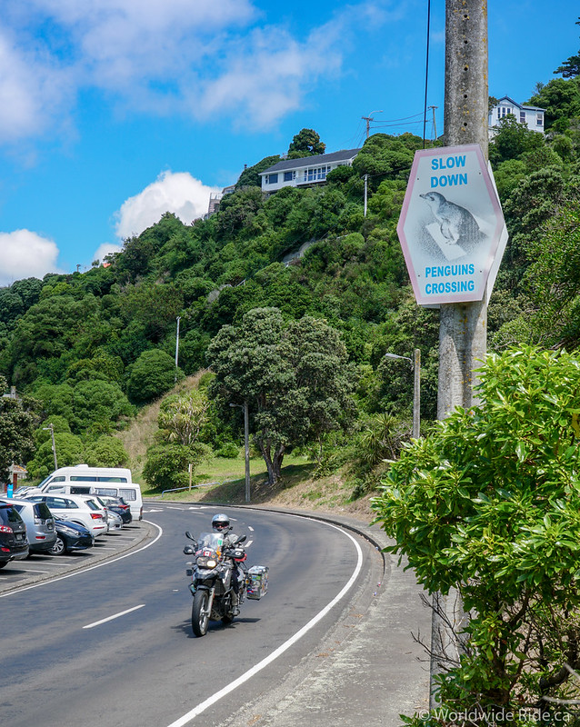North Island NZ 1-99