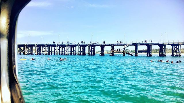 041/365 • so many swimmers around the boat today, and some awesome action from kids on the pier! • . #viewfromthekitchen #coffsharbour #hot #northernnsw #visitnsw #northernrivers #abcmyphoto #bellalunaboat #cruising #Summer2018 #eastcoastaustralia #liveaboard