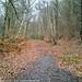 Rishworth Branch former Trackbed 13.