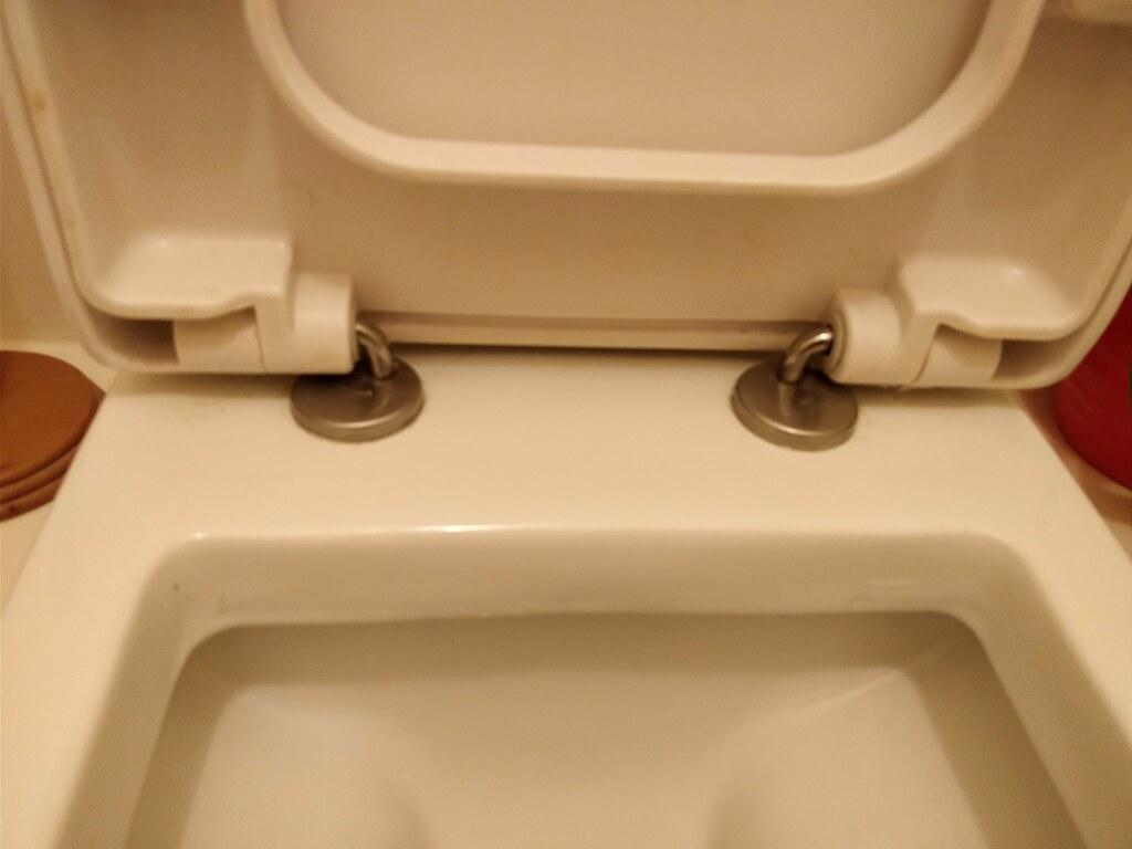 How on earth do I tighten this toilet seat?? - MoneySavingExpert.com ...