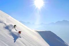 Skitouren, Abfahrt in Pulverschnee. Foto: Josef Mallaun.