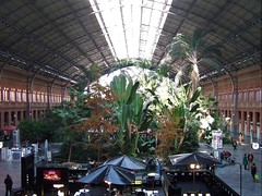 Madrid Atocha Station- with tropical garden inside