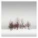 Winter Poem IV by Vesa Pihanurmi