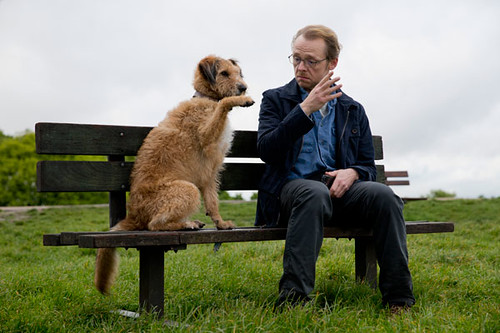 Absolutely Anything - screenshot 4