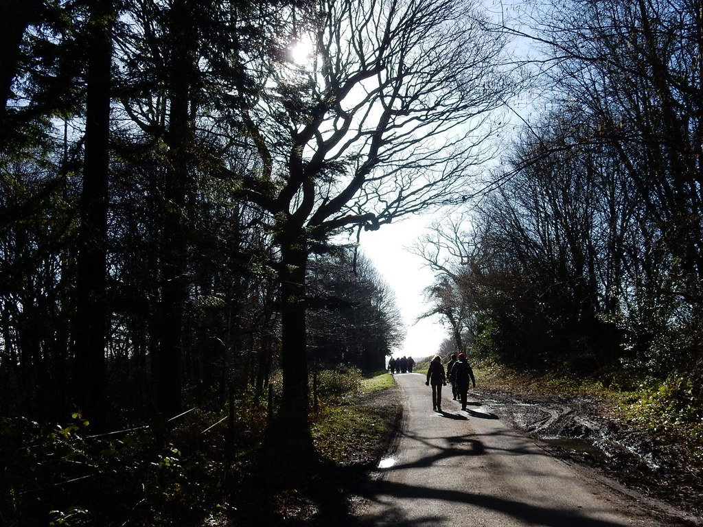 On and on, up and up Balcombe Circular (winter)