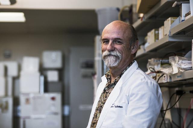 Nichols lab, Alzheimer's Disease research