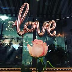 Love :tulip:(last week)