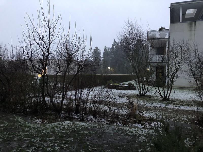 Snow storm Elanor