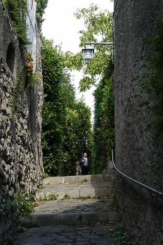 The Way to the Villa Maria