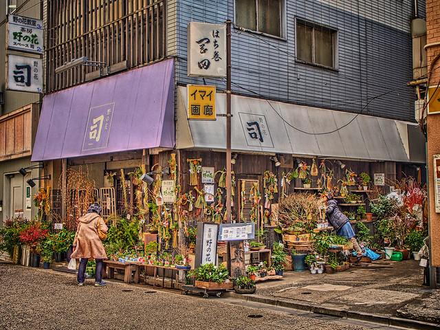 Photo:野の花 司 By jun560