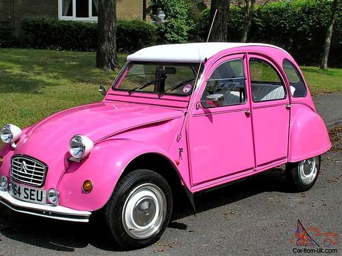 Pink2CV