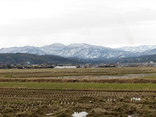 金沢競馬場の裏から見上げた山