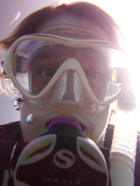 Sunday Scuba Fun Day Diving Molasses