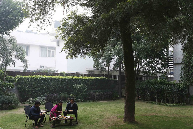 City Life - The Shriram Family's Pine & Seeta Ashok Trees, Sardar Patel Road