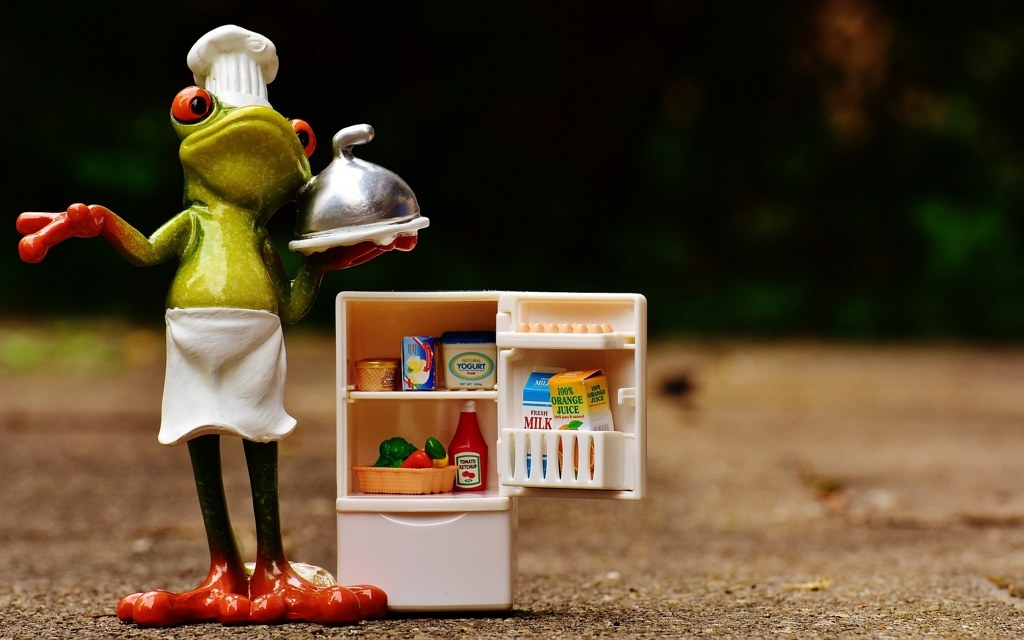 whyaresmall-japaneserefrigerator