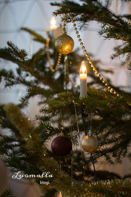 joulukuusi (2)